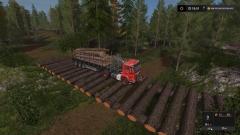 bosbouw 4.jpg