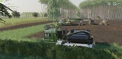 1200 bomen te kappen in Hollandscheveld 1.jpg